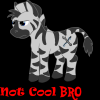 1341964011.dombrus_notcoolbronysmall